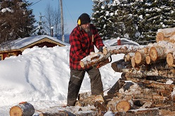 Startseite Holz sägen